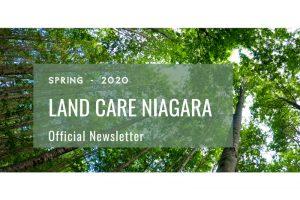 Newsletter Spring 2020