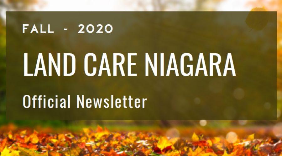 Newsletter Fall 2020