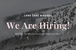 CLOSED Job Posting: 2021 Wildlife Technician Contract