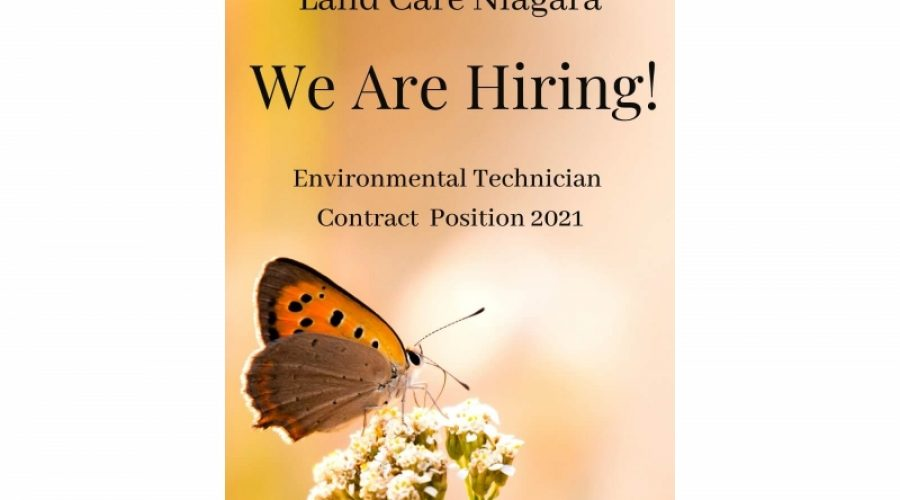 Job Posting: Environmental Technician Contract Summer 2021 (CLOSED)